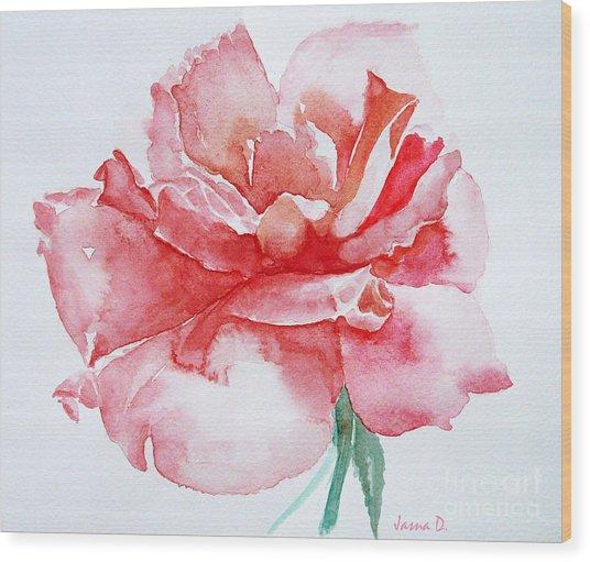 Rose Pink Wood Print