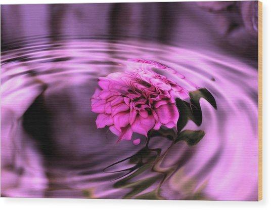 Rose Pool Wood Print