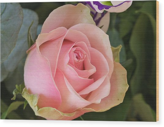 Rose Wood Print by Theo Tan