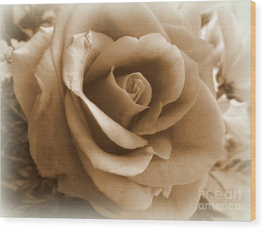 Rose Vignette Wood Print