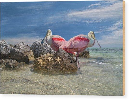 Roseate Spoonbill Florida Keys Wood Print