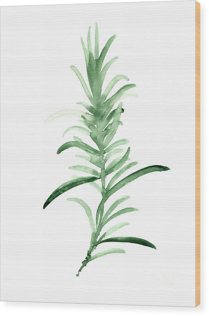 Rosemary Green Watercolor Foodart Wood Print