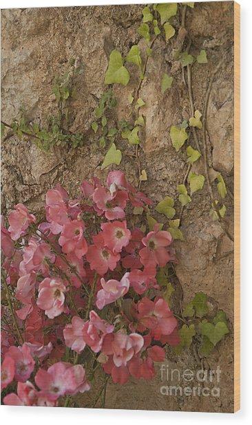 Roses In Spain Wood Print