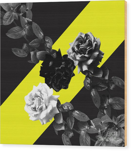 Roses Versus Yellow Wood Print