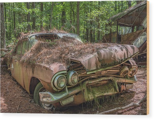 Rotting Classic In Color Wood Print