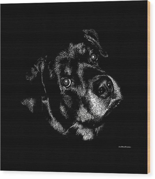 Rottweiler Mozart Portrait Wood Print