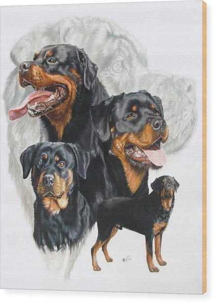 Wood Print featuring the mixed media Rottweiler Medley by Barbara Keith