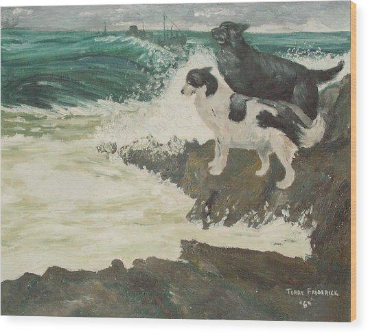Roughsea Wood Print