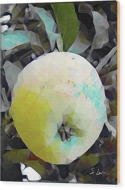 Round Fruit Wood Print