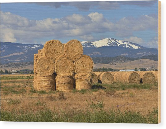 Round Hay Bales And Mountain Wood Print