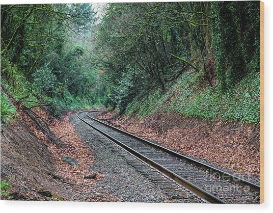 Round The Bend Wood Print
