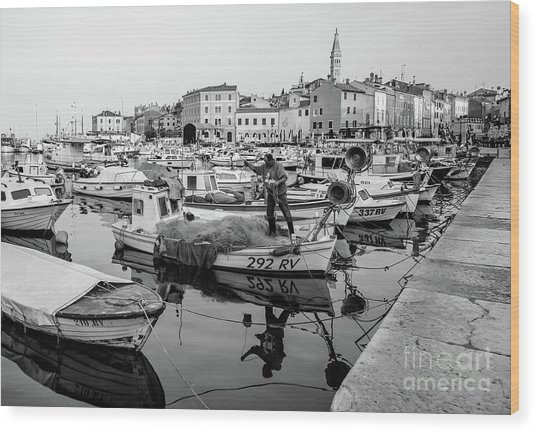 Rovinj Fisherman Working In Old Town Harbor - Rovinj, Istria, Croatia Wood Print
