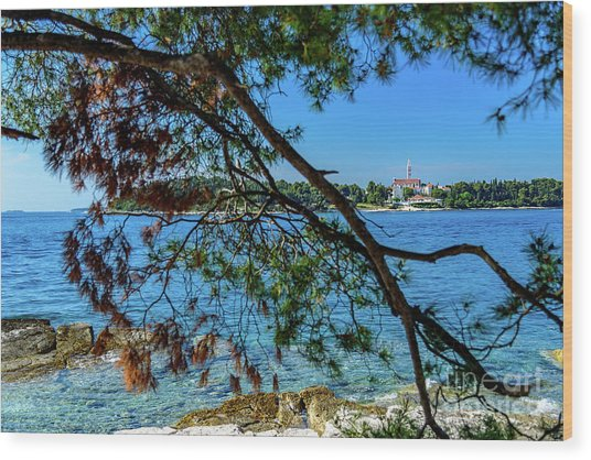 Rovinj Old Town Accross The Adriatic Through The Trees Wood Print