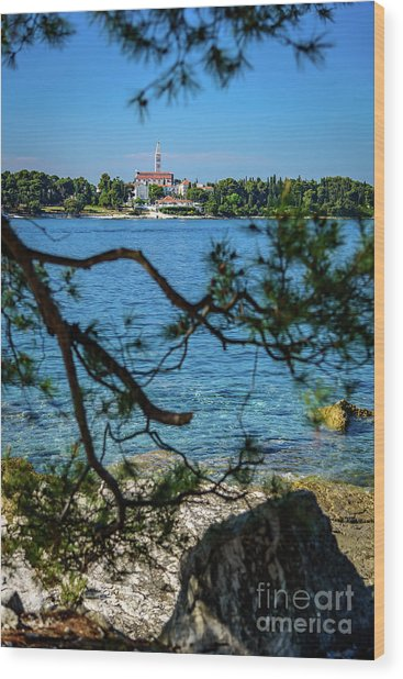 Rovinj Seaside Through The Adriatic Trees, Istria, Croatia Wood Print