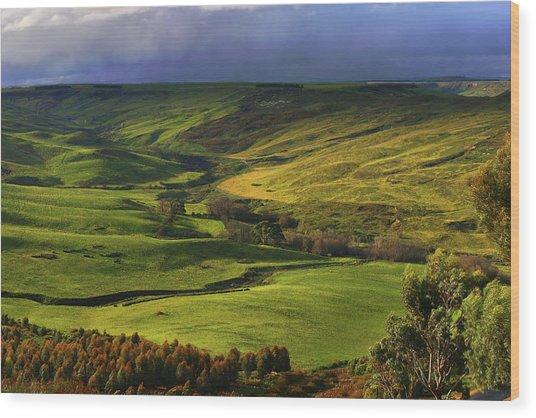 Rowsley Valley Wood Print by David Hibberd