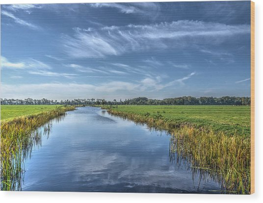 Royal Canal And Grasslands Wood Print