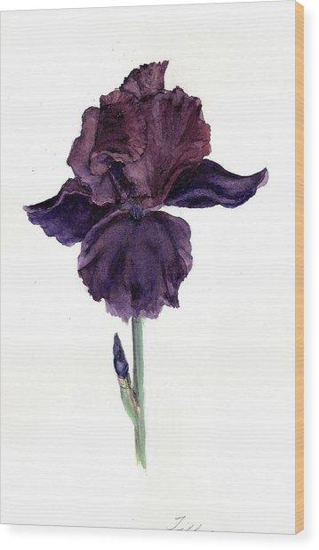 Royal Ruffles Wood Print by Susan Tilley