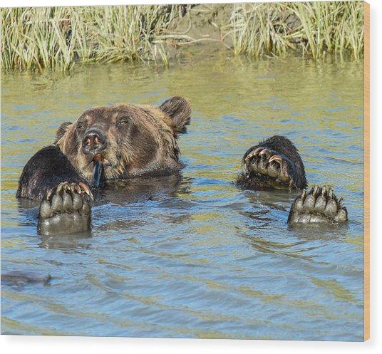 Rub A Dub Dub A Bear In His Tub Wood Print