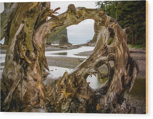 Ruby Beach Driftwood 2007 Wood Print