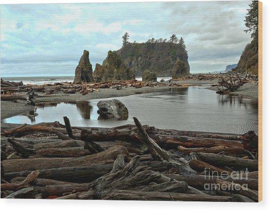 Ruby Beach Driftwood Wood Print