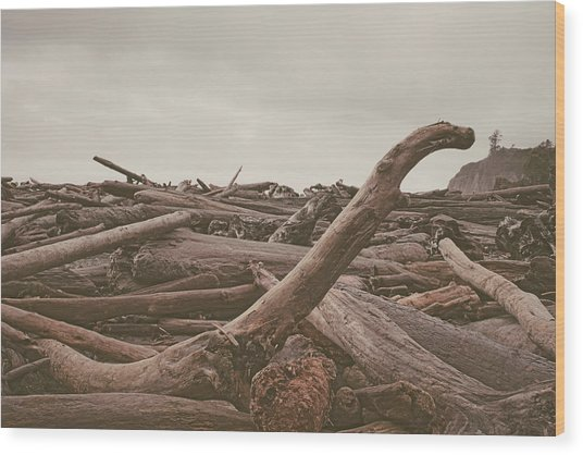 Ruby Beach No. 10 Wood Print
