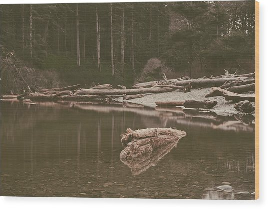 Ruby Beach No. 13 Wood Print
