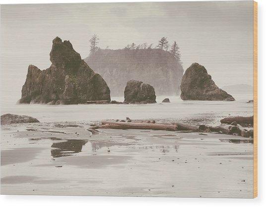 Ruby Beach No. 15 Wood Print