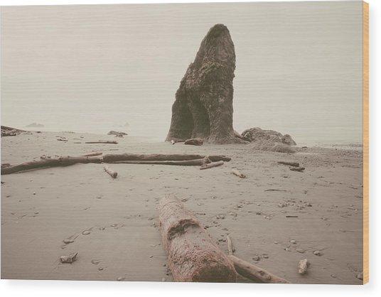 Ruby Beach No. 16 Wood Print