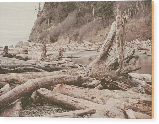 Ruby Beach No. 9 Wood Print
