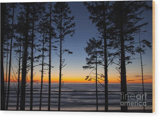 Ruby Beach Trees #4 Wood Print