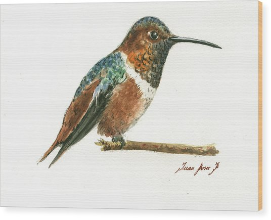 Rufous Hummingbird Watercolor Wood Print