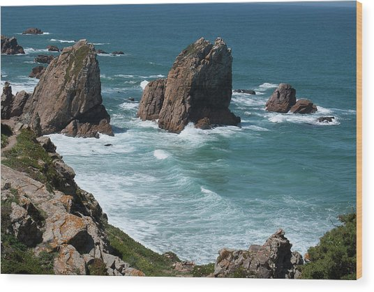 Rugged Coastline - Portugal Wood Print by Connie Sue White