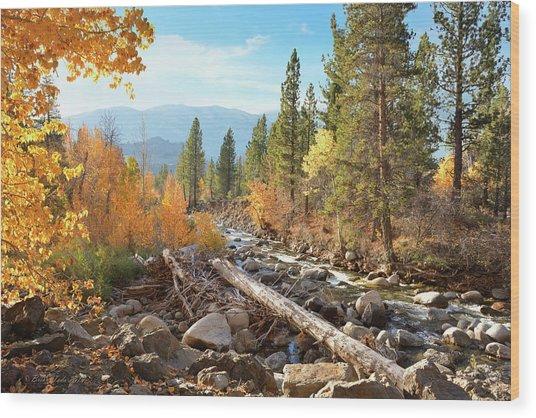 Rugged Sierra Beauty Wood Print