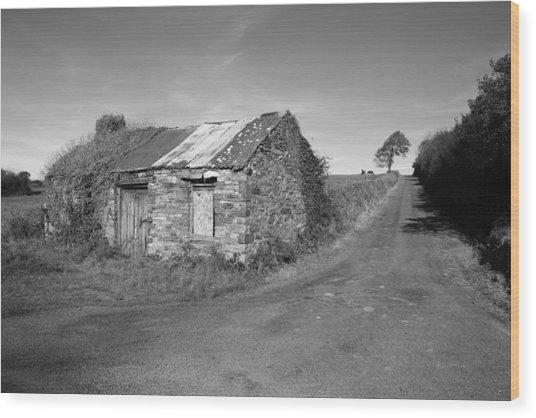 Ruined Irish Cottage Wood Print by John Quinn