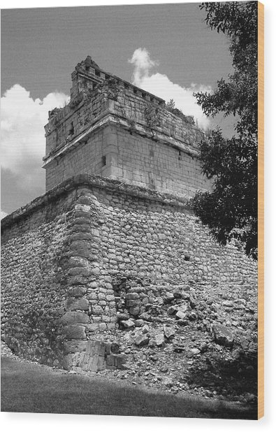 Ruins At Chichen Itza 2 Wood Print