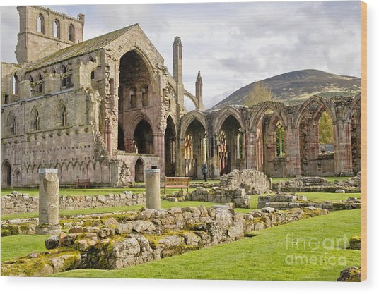 Ruins. Melrose Abbey. Wood Print
