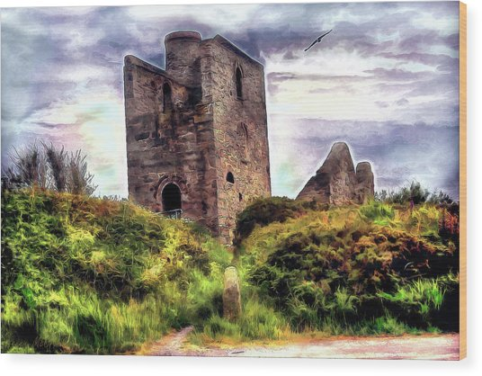 Ruins Of The Old Tin Mine Wood Print