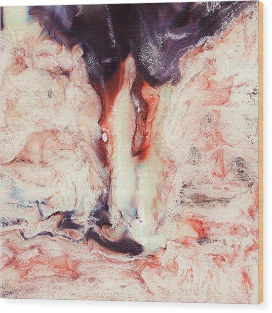 Runner Wood Print by Paul Tokarski