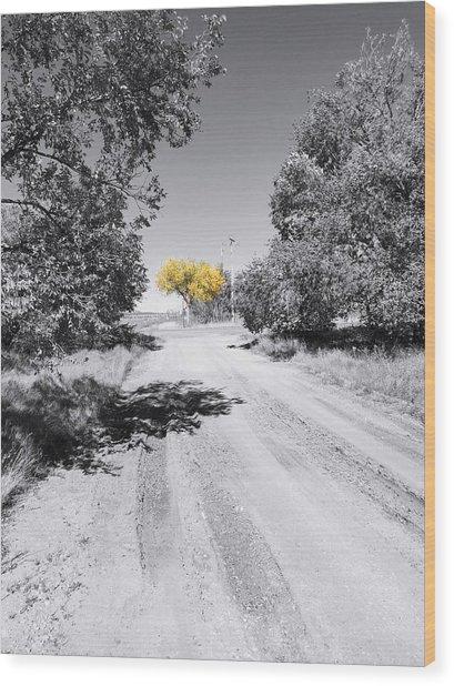 Rural Autumn Splash Wood Print