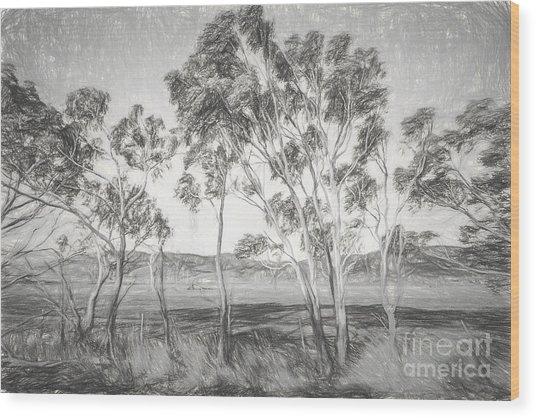 Rural Landscape Pencil Sketch Wood Print