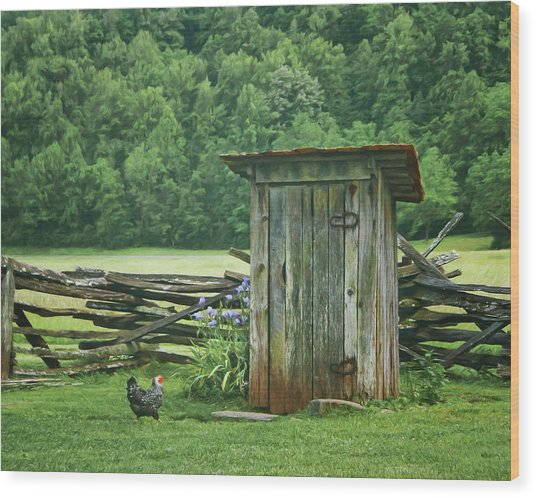 Rural Outhouse Wood Print