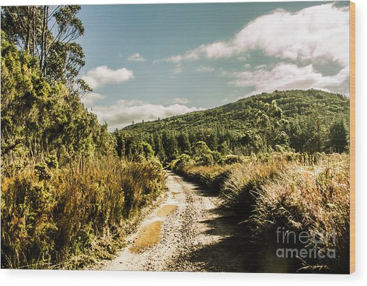 Rural Paths Out Yonder Wood Print