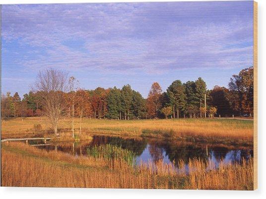 Rural Pond - 1 Wood Print by Randy Muir