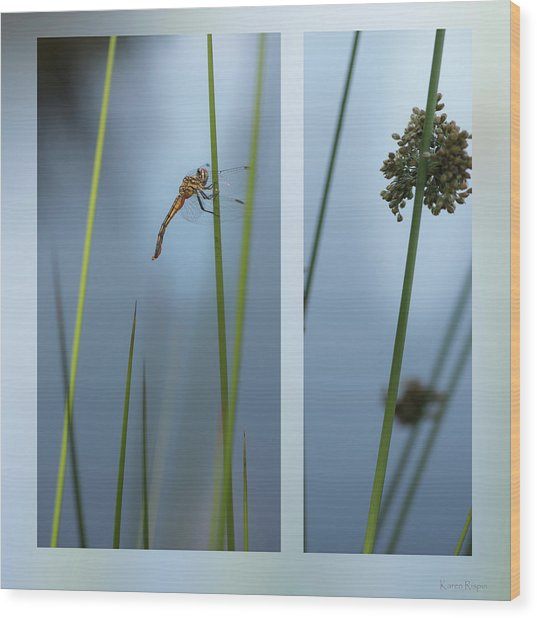 Rushes And Dragonfly Wood Print