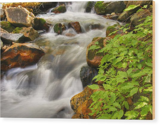 Rushing Water 3 Wood Print by Douglas Pulsipher