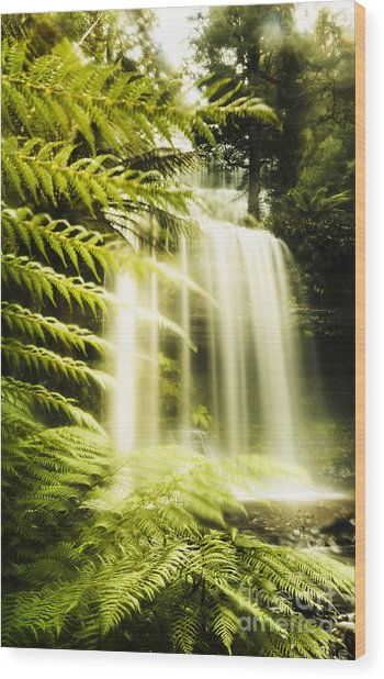 Russell Falls Background Wood Print