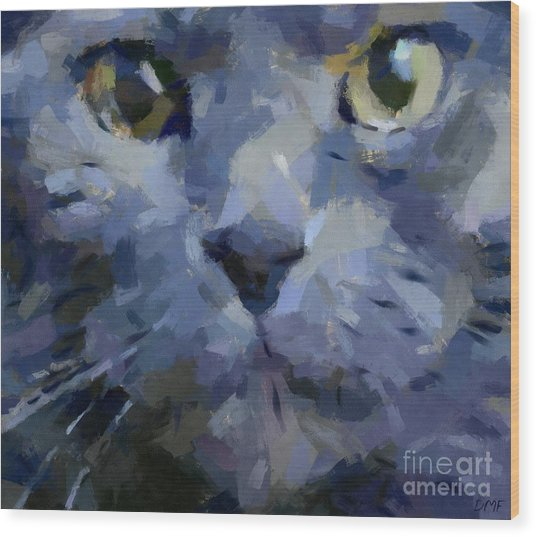 Russian Blue Cat Wood Print