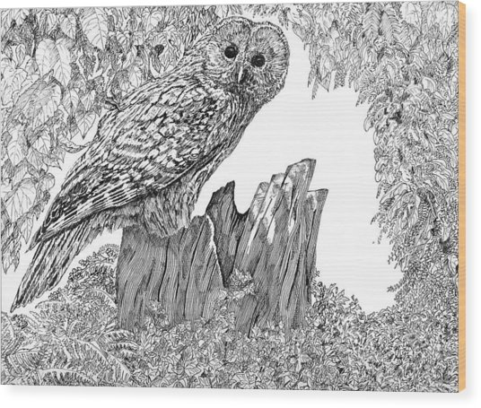 Russian Owl Wood Print by Leonie Bell