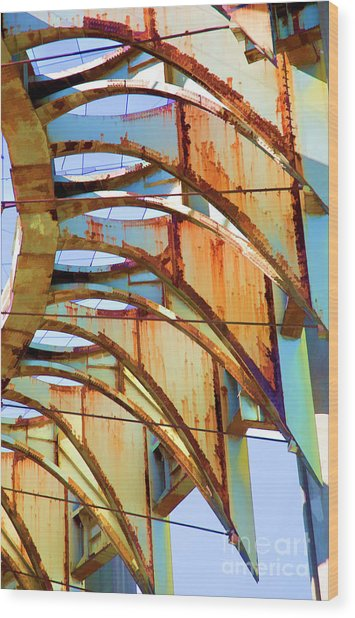 Rust Pavilion World's Fair 1964 Ny Wood Print