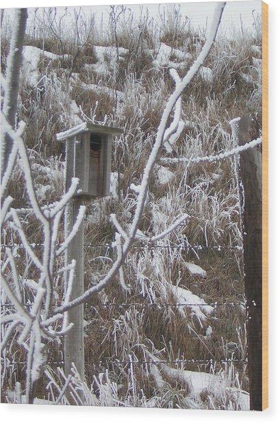 Rustic Birdhouse Wood Print by Deena Keller
